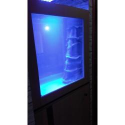 Aquarium récifal 400 litres