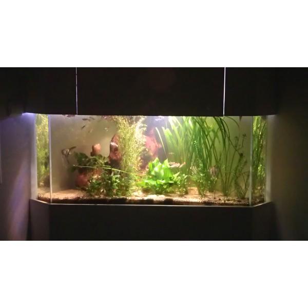Aquarium et meuble d 39 angle 350 litres aquabiance for Aquarium 350 litres