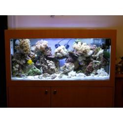 Aquarium et meuble 540 litres fibre et résine