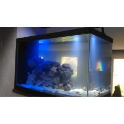 Aquarium 600 litres