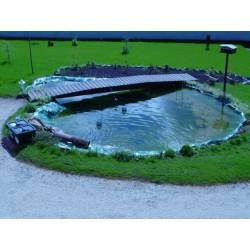 Bassin 10000 litres