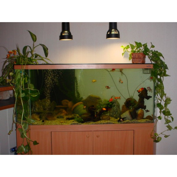 aquarium d 39 angle 350 litres et meuble aquabiance. Black Bedroom Furniture Sets. Home Design Ideas
