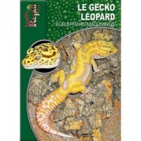 Eublepharis Macularius - Le Gecko Léopard