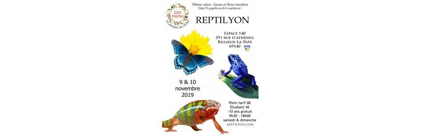 REPTILYON (69)