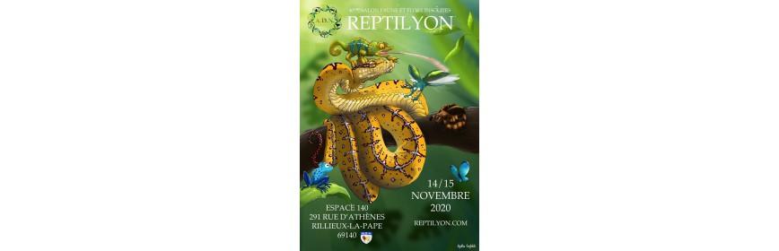 REPTILYON (69) bourse terrariophile